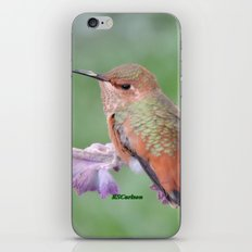 DO NOT Raid My Patch of Sage  iPhone & iPod Skin
