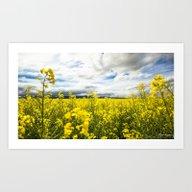 Art Print featuring Fields Of Yellow by Light Wanderer