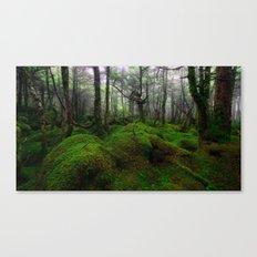 Enchanted forest mood III Canvas Print