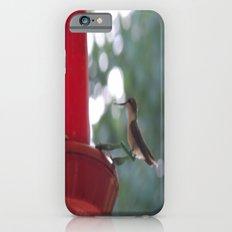 Hummingbird w/ bokeh iPhone 6s Slim Case