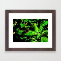 Butterfly rest on leave Framed Art Print