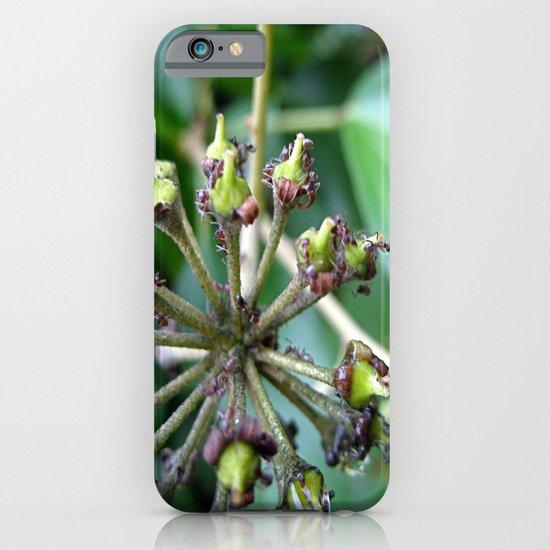 Ants on Plants iPhone & iPod Case