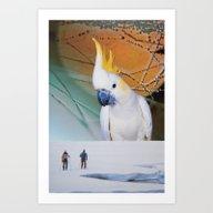 Art Print featuring Cockatoo by John Turck