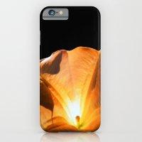 iPhone & iPod Case featuring aurea by Dr. Tom Osborne