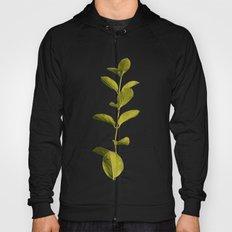 Botanica Art V3 #society… Hoody
