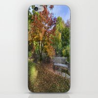Autumn Bench  iPhone & iPod Skin