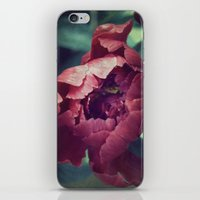 Peony Red flower iPhone & iPod Skin