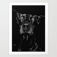 The Curious Expressions of Dogs Art Print