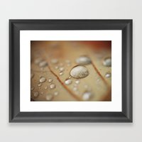 Autumn Drop Framed Art Print