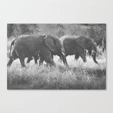 Grazing Elephants Canvas Print