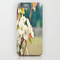 Pear Blossoms iPhone 6 Slim Case