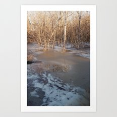 The Thaw Art Print