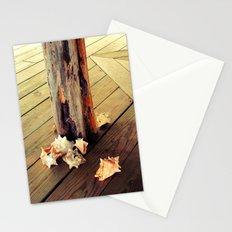 Belizean Shells Stationery Cards