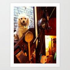 My dear Poodle Art Print