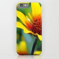Prairie Flower II iPhone 6 Slim Case