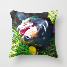 Dog Tanning Throw Pillow