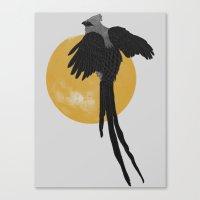 Mousebird Canvas Print