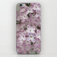 Lilac  iPhone & iPod Skin