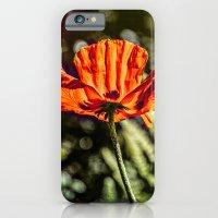 Glowing Poppy  iPhone 6 Slim Case