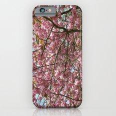 In Full Bloom iPhone 6 Slim Case