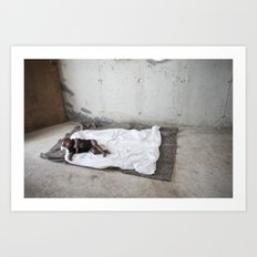 My baby's bed Art Print