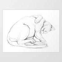 Cat II   /  Chat II   / … Art Print