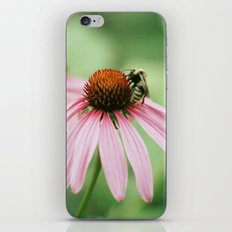 Summer memories iPhone & iPod Skin