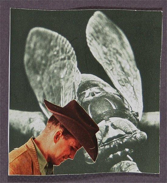 Howdy Locust  Art Print