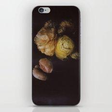 Ranunculus Still Life iPhone & iPod Skin