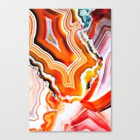 The Vivid Imagination Of… Canvas Print