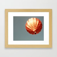 Strawberry Hot Air Baloo… Framed Art Print