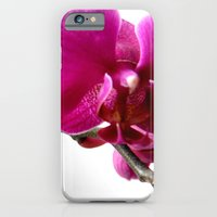 Orchidea iPhone 6 Slim Case