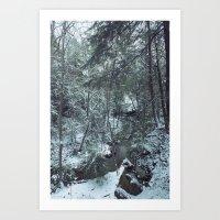 Hemlock Gorge Art Print
