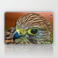 Kestrel Laptop & iPad Skin