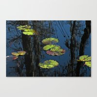 Winter Lily Pads Canvas Print