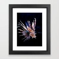 King of the Ocean Framed Art Print