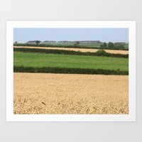 Fields of Devon I Art Print