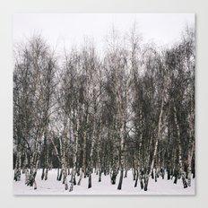 gorki park Canvas Print