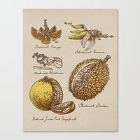 Clockwork Fruit  Canvas Print