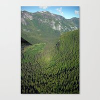 Another Kind of Rainforest Canvas Print