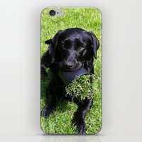 When Life Gives You Flow… iPhone & iPod Skin