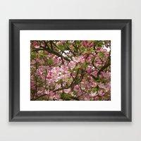 Pear Blossom II Framed Art Print