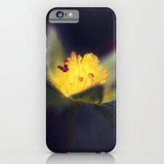 Strawberry Blooms in December iPhone 6 Slim Case