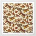 Moth Pattern Art Print