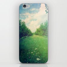 Apple Orchard in Spring iPhone & iPod Skin