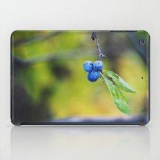 autumn fruit. iPad Case