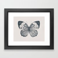 Butterfly 2 Framed Art Print