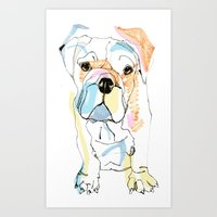 Bulldog Colour Art Print