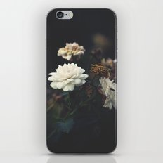 You're the One I Dream About iPhone & iPod Skin