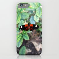 Butterfly Red iPhone 6 Slim Case